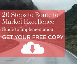 implementation guide - 20 steps to RtM excellence