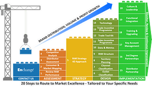 20 steps to route to market excellence model